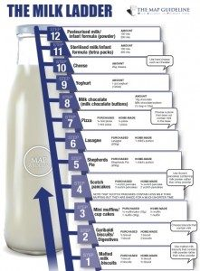 12 step milk ladder