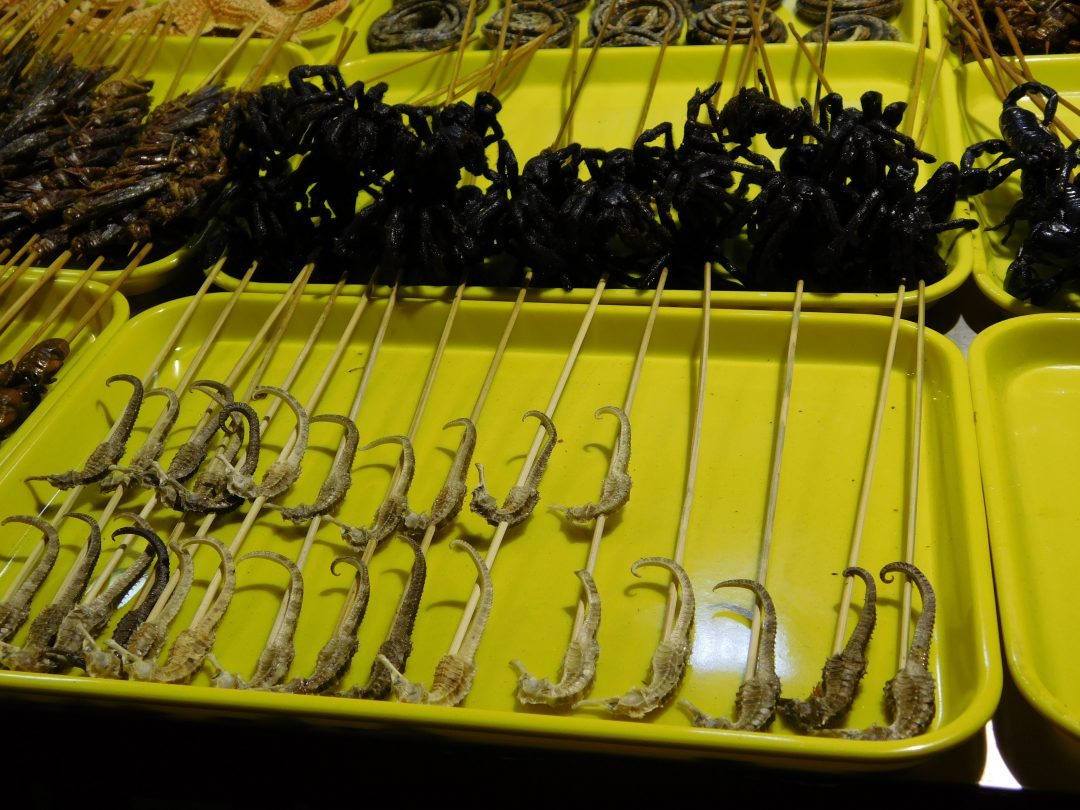 Beijing street food markets
