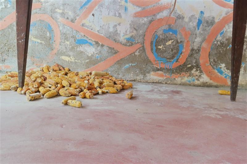 corn Cabo Verde