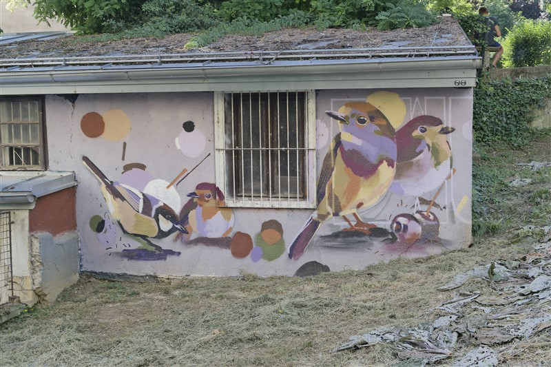 birds street art Zagreb