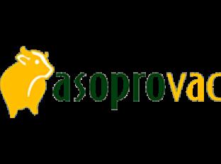 Asoprovac