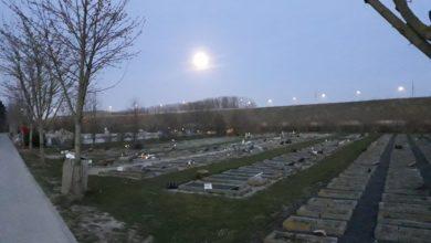 Photo of عدد وفيات الكورونا بين مسلمي الدنمارك يصل إلى 13 حالة