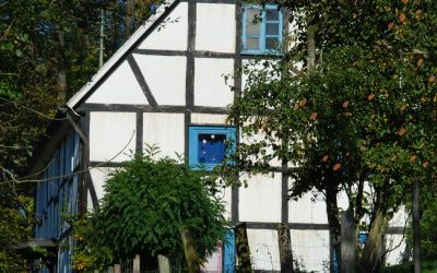 Wie naturnah ist ihr Haus/Garten – eine Checkliste