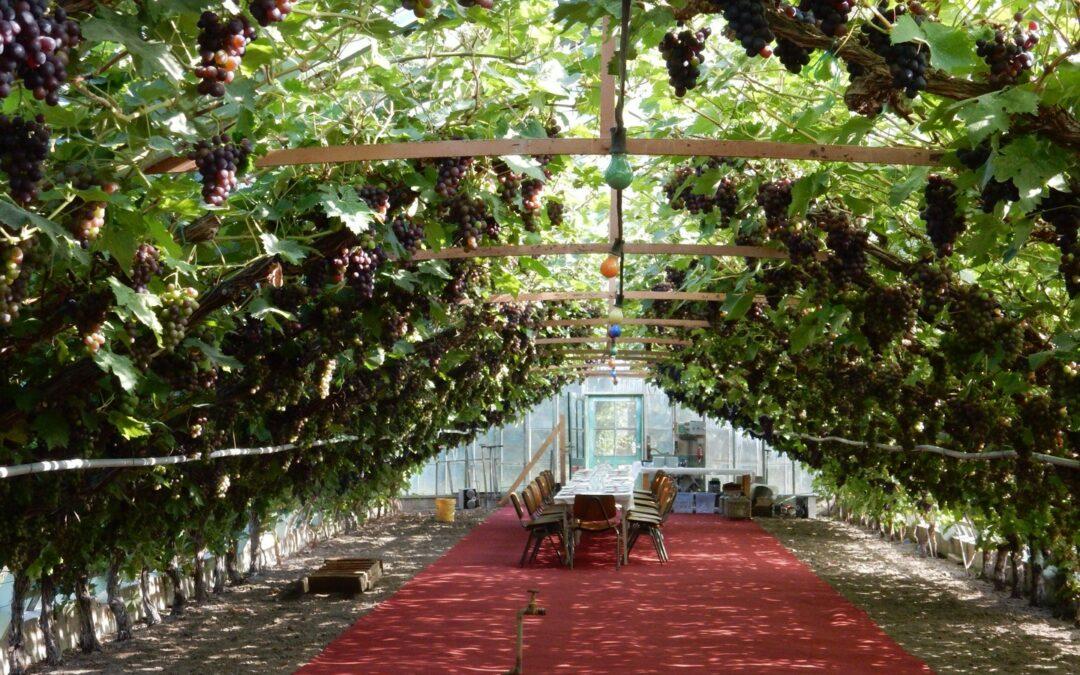 Historische tuin Blokker