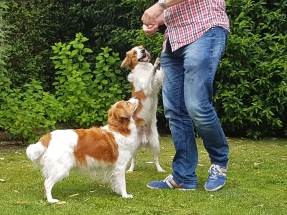 Puppybezoek Dorus