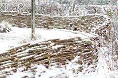 Wilgenscherm in winterlandschap
