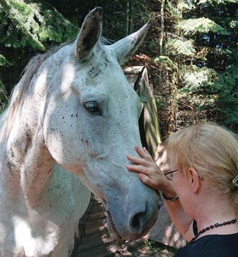 Hesteassisteret terapi hos Naturensommedicin.dk