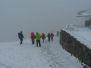Tyrol 2010