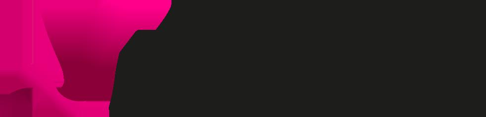 Logotyp för Niventiv av Emil Naula formgivare