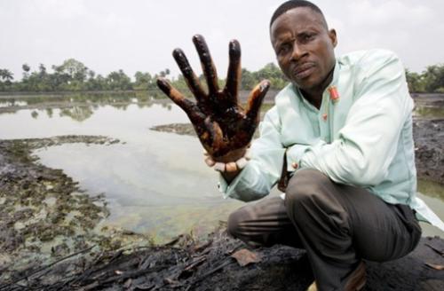 ¿Por qué el proyecto Niger Delta Kowledge Center?