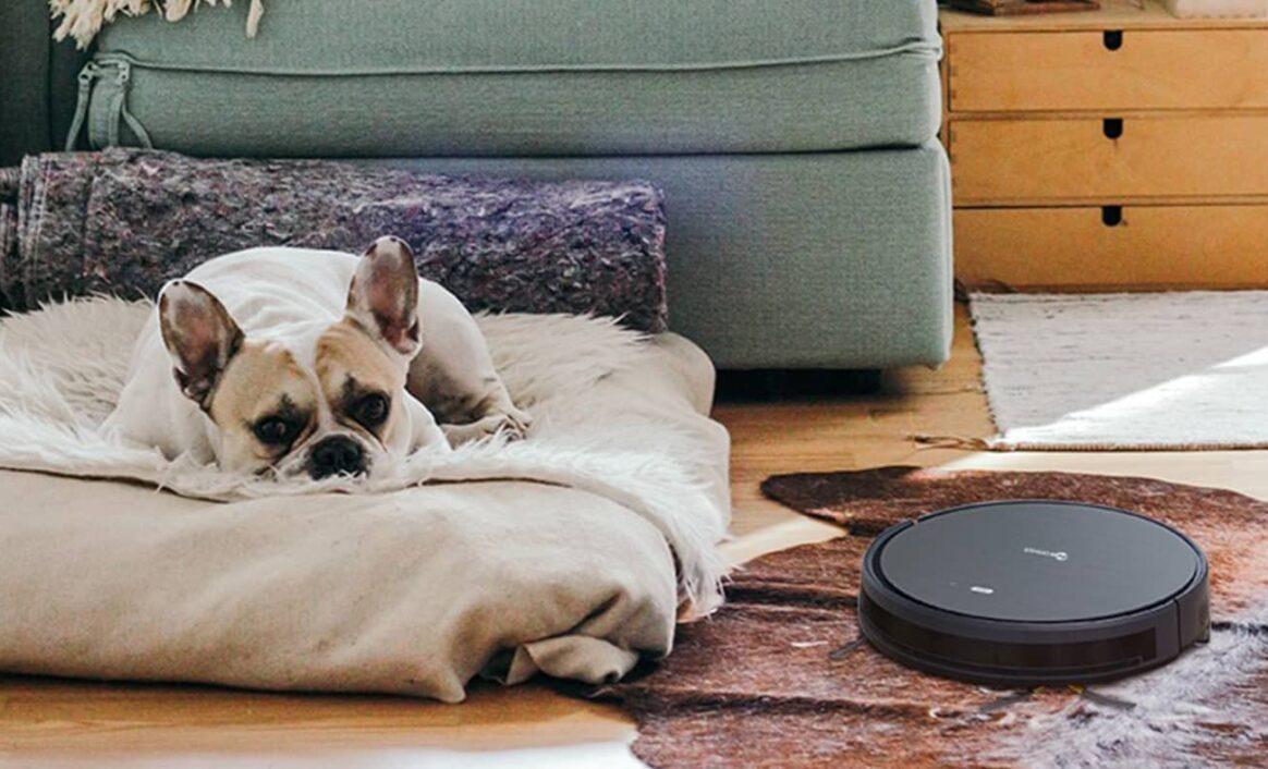 Hvilken robotstøvsuger er best mot hundehår?