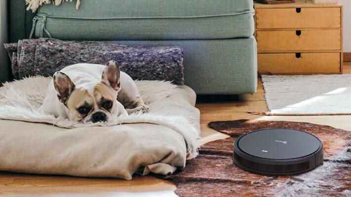 Robotstøvsuger hundehår