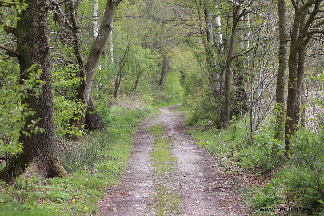 wandeling abeekvallei