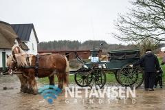 Hestevognen var på flere ture - Foto: René Lind Gammelmark