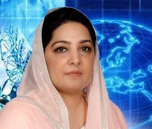 National incubation center is direly needed. Anusha Rehman