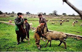 Pakistan by Zohaib Tariq