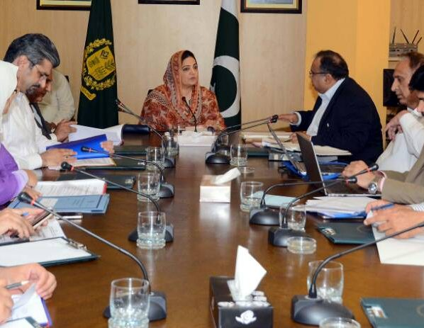 Minister of State for Information Technology and Telecom Anusha Rehman in an earlier meeting with BOD TIP said that TIP affairs will be streamlined at any
