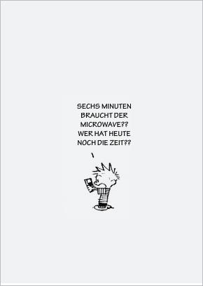 Calvin u. Hobbes