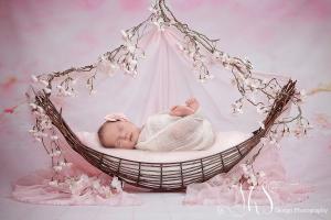 JHS Design Newborn Fotografie Spijkenisse (1)