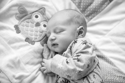JHS Design newborn lifestyle Fotografie-21