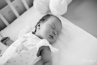 JHS Design newborn lifestyle Fotografie-27