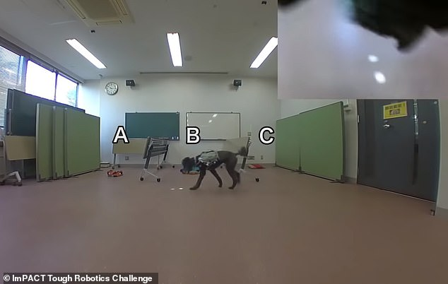 Footage of recent experiments with the system show how a dog can be guided toward an object of interest, and even navigate objects, simply by following a dot of light