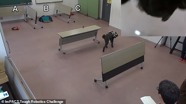 The suit also carries a camera that shows the handler a view from the dog¿s perspective, allowing the person in charge to see what the dog is seeing as it navigates the space (top right)