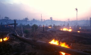 Fire in the Amazon region. Some fires are lit to facilitate small-scale subsistence agriculture, others clear land for commercial plantations.