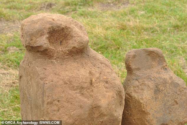 The 'amazing' series of stones — which may have been used to tie off mooring ropes and help secure the roof of a building — stand at up to 20 inches (50 cm) tall