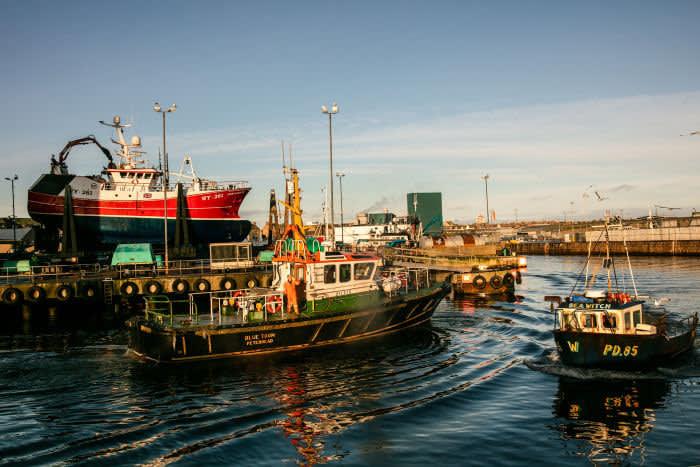 Fishing vessels in Peterhead harbour