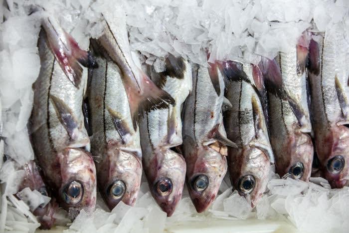 at Peterhead Fish Market