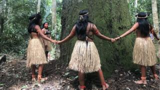 Young girls from the Arara-Karo tribe offer a prayer to an old tree in the Amazon rainforest