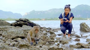 Closer to nature … long-tailed macaques on Thailand's east coast use rock tools to catch shellfish.