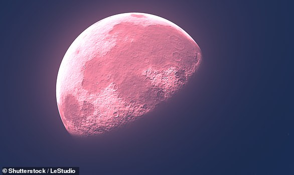 The phenomenon, known as the 'Pink Moon', earns its name from the flowering of the brightly-coloured herb 'moss pink'