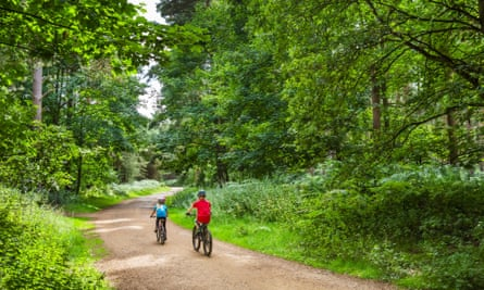 Children cycling through Thetford Forest