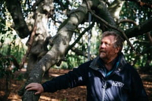 Tony Kirkham MBE, Head of the Arboretum at Royal Botanic Garden, Kew