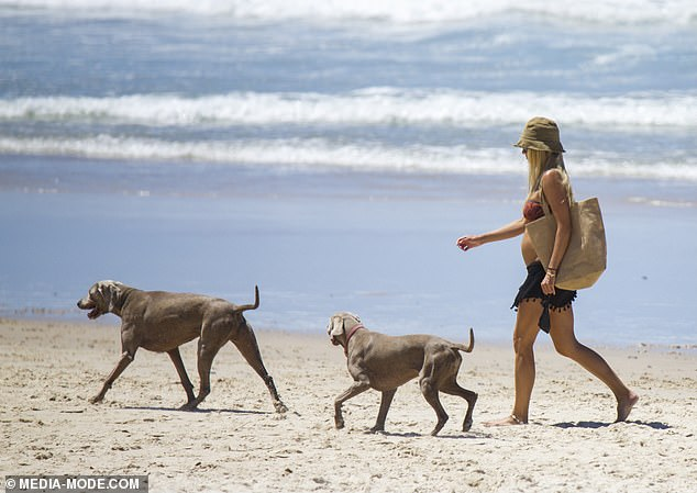 Stroll: Elyse was spotted walking along the waters edge with her Weimaraner dogs, who appeared to be enjoying the exercise