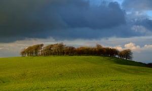 Chanctonbury Ring, South Downs