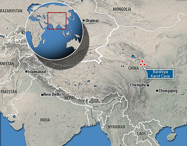 By examining the sediment of Baishiya Karst Cave located on a high plateau in Tibet, researchers identified ancient mitochondrial DNA from Denisovans, indicating their presence possibly 45,000 years ago