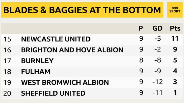 Snapshot of the bottom of the Premier League table: 15th Newcastle, 16th Brighton, 17th Burnley, 18th Fulham, 19th West Brom & 20th Sheff Utd