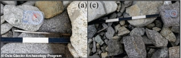 Examples of arrows found at Langfonne. Left shows the nock end of an arrow and right shows a partiallypreserved arrow shaft in four fragments at the bottom left of the picture