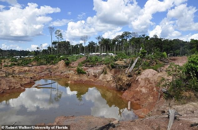 Destruction of the local ecology at a gold mine in the Amazon. A 'collapse' of environmental governance in Brazil and other Amazonian nations has renewed public concerns about the fate of the forest
