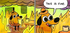 This is fine! 2020 is fine!