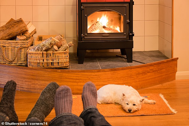 Fashionable wood burning stoves are the UK's single biggest source of particulate air pollution and produce three times more of the toxins than the nation's road traffic, Government data released today shows