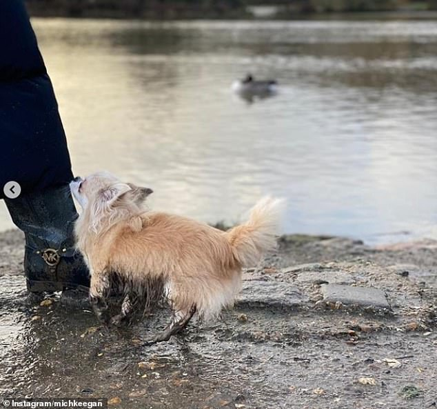 Cute: Michelle shared a sweet snap of her tiny dog covered in mud on their walk
