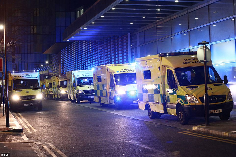 The queues outside Royal London Hospital come a day after data revealed London's intensive care units were running at 114 per cent capacity Monday night