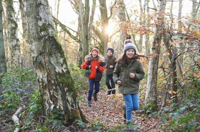 Children running along a path in woodland