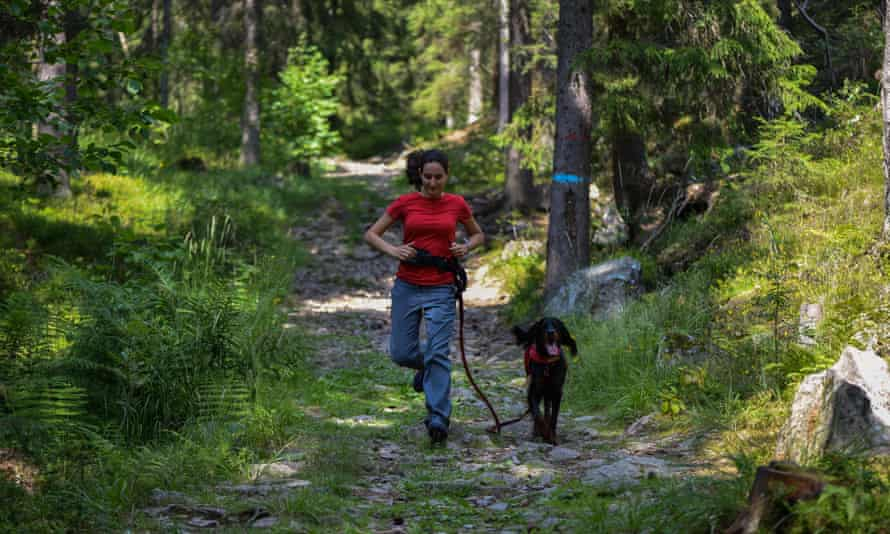 Woman walking in the forest with a Gordon Setter