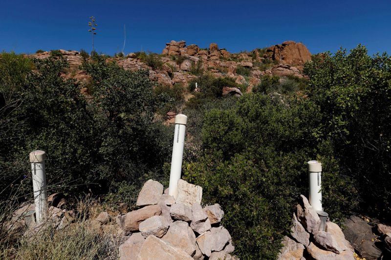 © Reuters. FILE PHOTO: FILE PHOTO: Stakes mark a mining claim in the Oak Flats area near Superior, Arizona