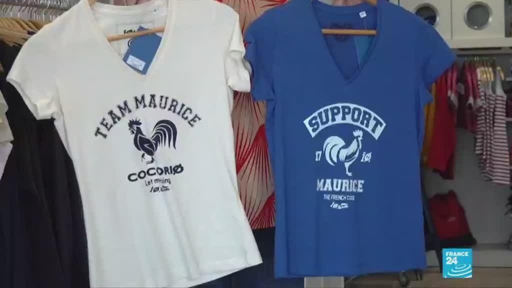 Maurice the raucous rooster became an unwitting emblem of rural life in France.